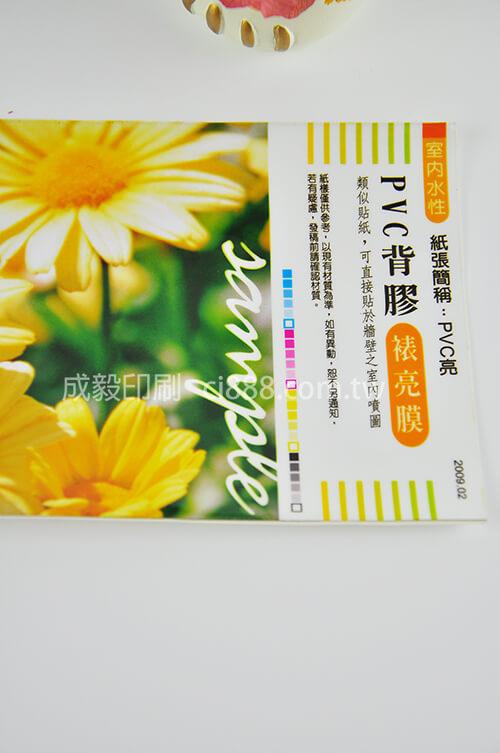 PVC背膠-PVC背膠大圖製作-單面彩色印刷-客製化印刷創意海報大圖設計